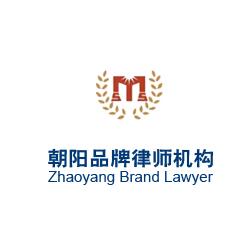 朝阳品牌律师机构律师